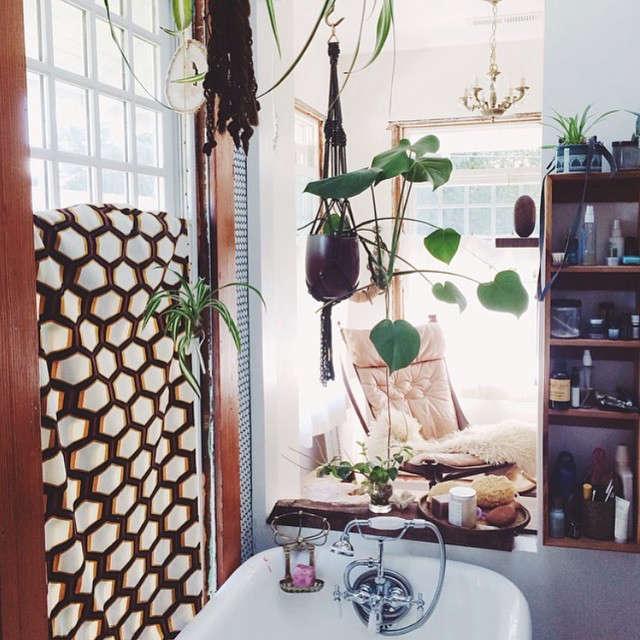 gardenista-indoors-emily-katz