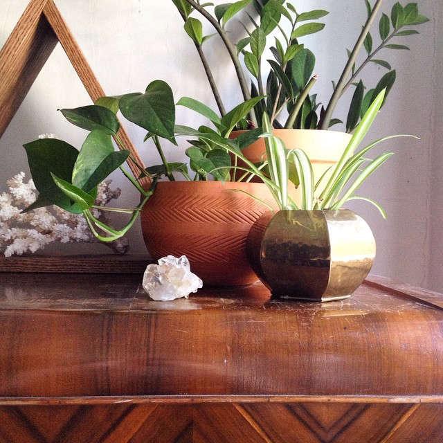 gardenista-indoors-mamakeavintage