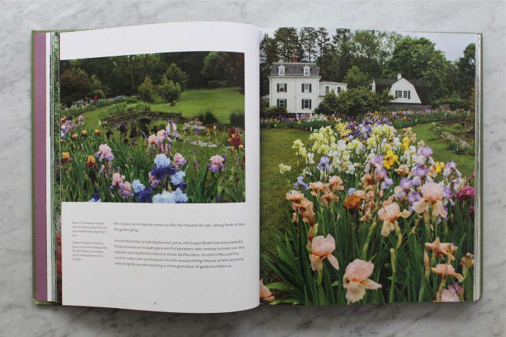 gardens-of-the-garden-state-book-irises-gardenista