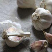 garlic-honey-4-erin-boyle-gardenista