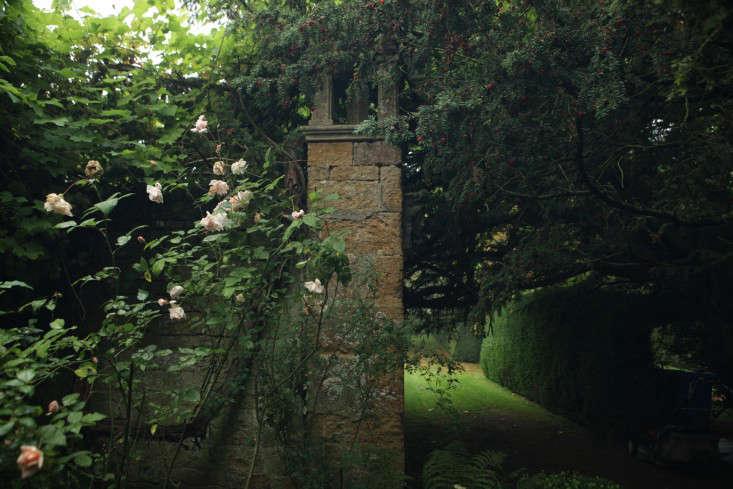 glendon-rose-column