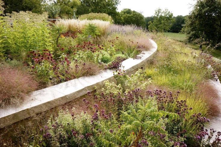 grasses-perennials-adam-woodruff-garden-gardenista