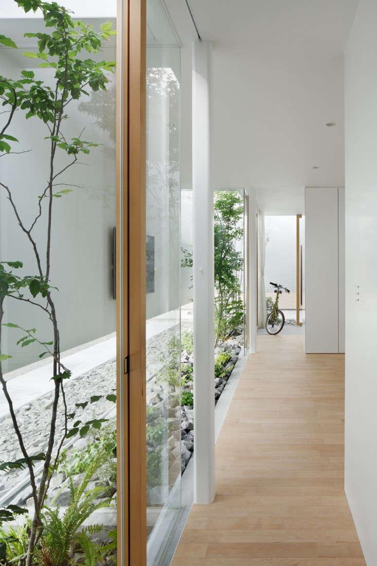 green-edge-house-nacasa-and-partners-2