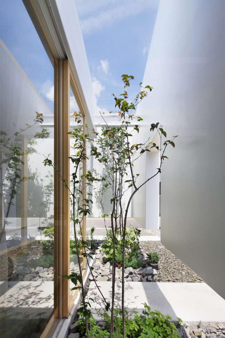 green-edge-house-nacasa-and-partners-4