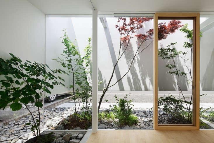 green-edge-house-nacasa-and-partners-gardenista