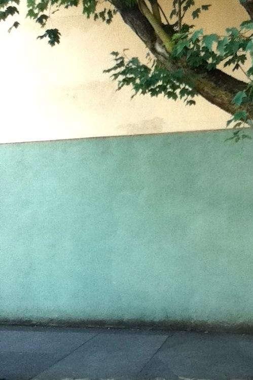 green-stucco-wall