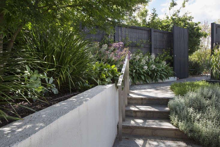 grounded-gardens-courtyard-garden-black-fence-gardenista