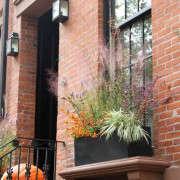 halloween-planter-1-erinboyle-gardenista