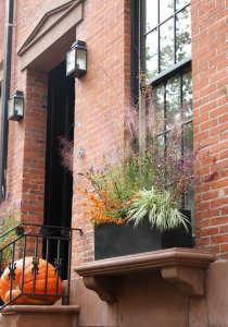 design sleuth: spooky halloween planters | gardenista