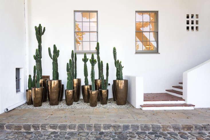 hancock-park-la-garden-visit-stucco-spanish-succulents-gardenista-0073