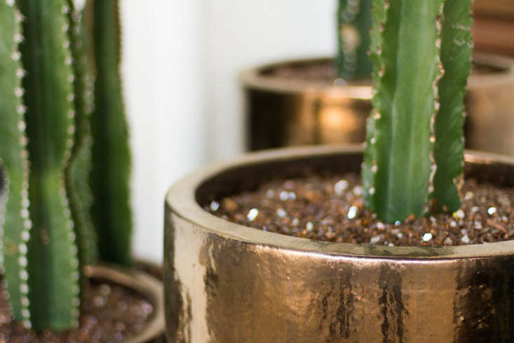 hancock-park-la-garden-visit-stucco-spanish-succulents-gardenista.-2