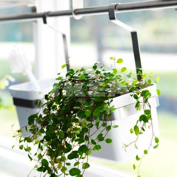 hanging window box from ikea
