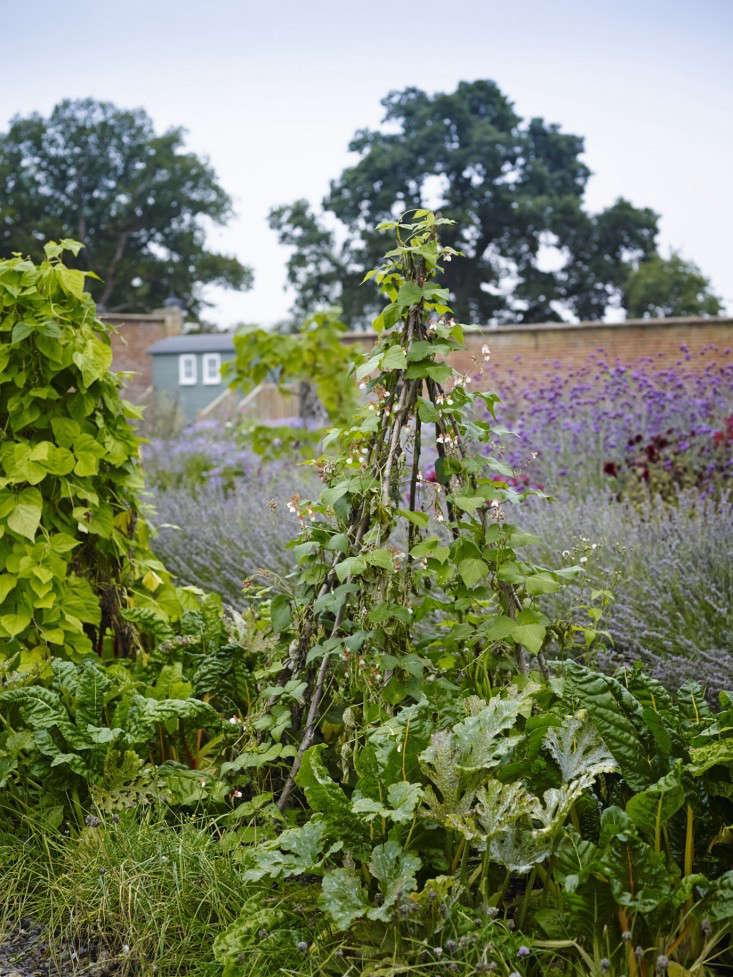 heckfield-place-kitchen-garden-gardenista