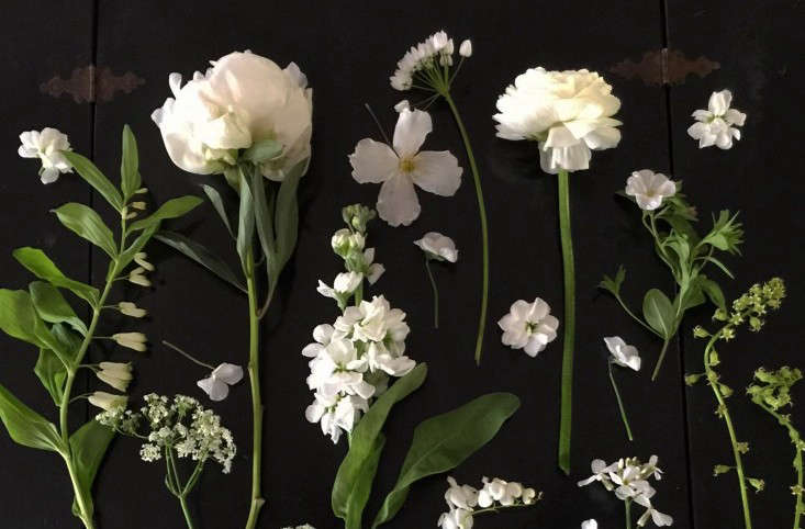Expert Advice 10 White Garden Ideas From Petersham