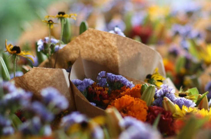 hero-local-flowers-thanksgiving-gardenista