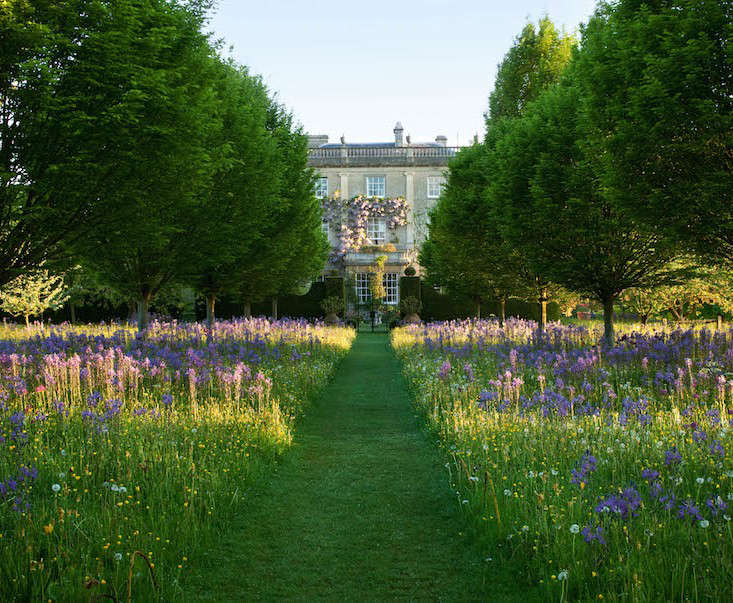 highgrove-mown-meadow-path-prince-charles-gardenista