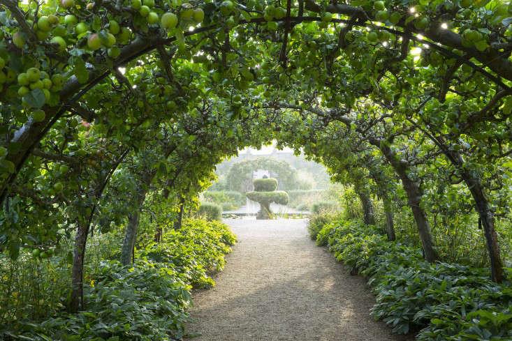 highgrove-prince-charles-kitchen-garden-espalier-apple-trees-gardenista