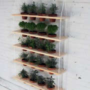 homemade-modern-diy-plant-shelves-gardenista-2