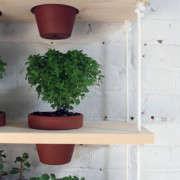 homemade-modern-diy-plant-shelves-gardenista-3