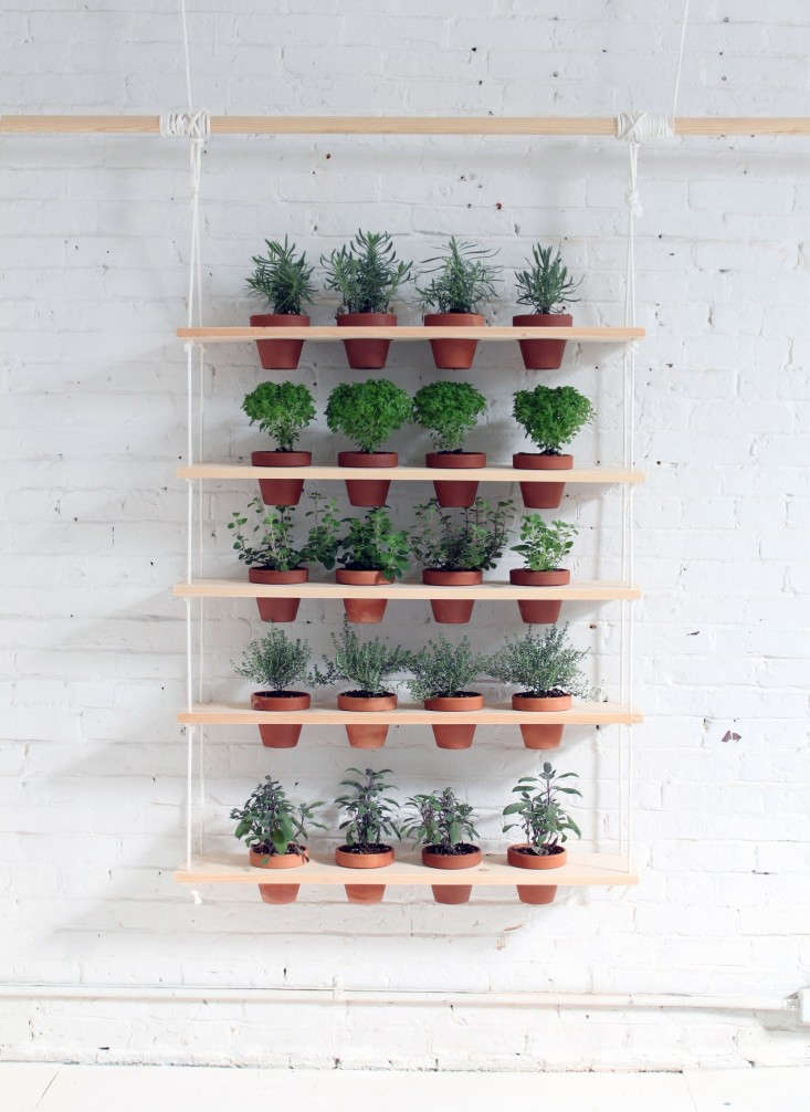 homemade-modern-diy-plant-shelves-gardenista-6