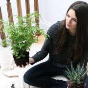 houseplants-history-14-erin-boyle-gardenista