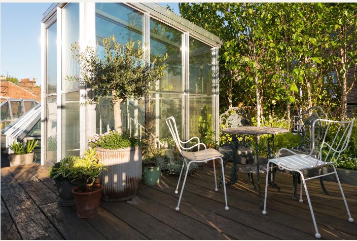 houseplants-islington-roof-garden-2-gardenista