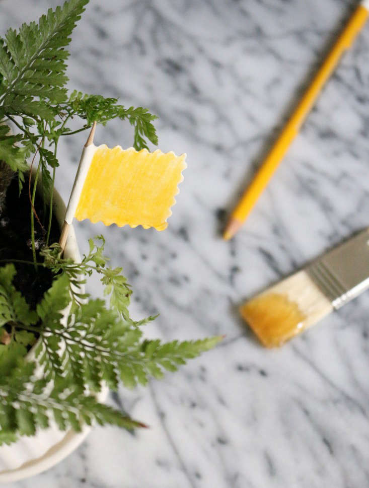 Goodbye, Fungus Gnats: Pest-Free Potting Soil - Gardenista