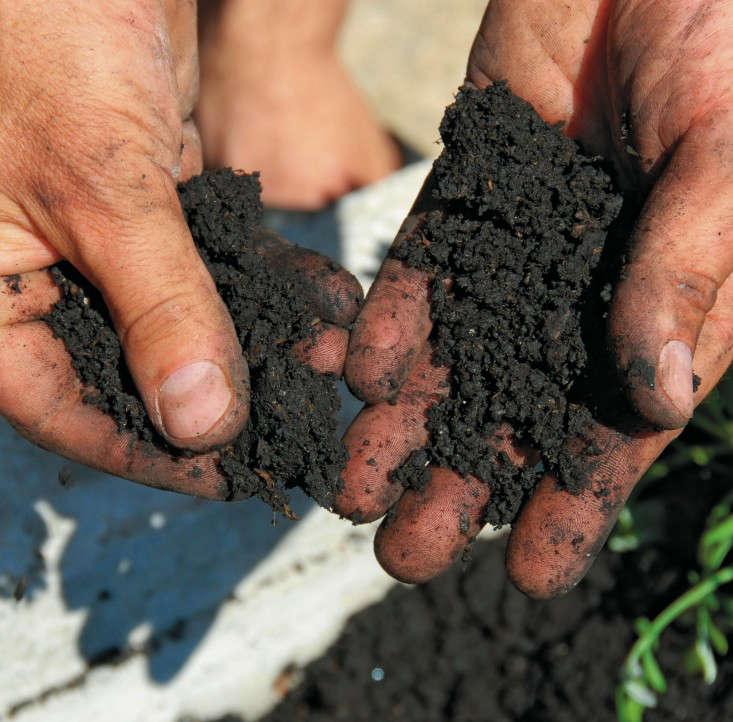 how-to-improve-garden-soil-3-gardenista
