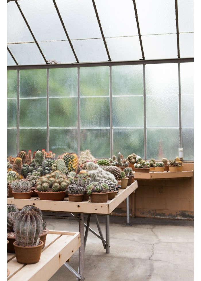 huntington-garden-greenhouse-6-laure-joliet-gardenista