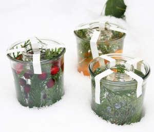 botanical ice lanterns | gardenista