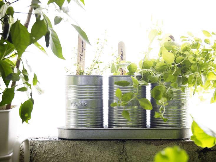 ikea-herb-pots-gardenista