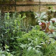 isabelle-palmer-balcony-gardener-jonathan-gooch-12-gardenista