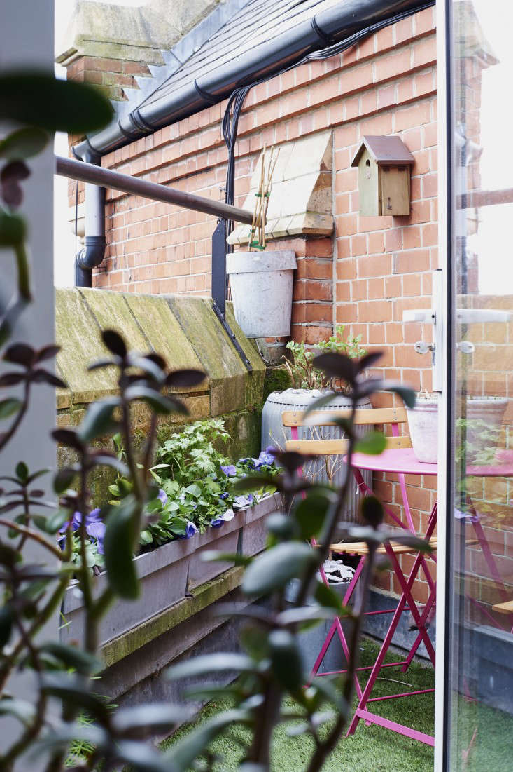 isabelle-palmer-balcony-gardener-jonathan-gooch-13-gardenista