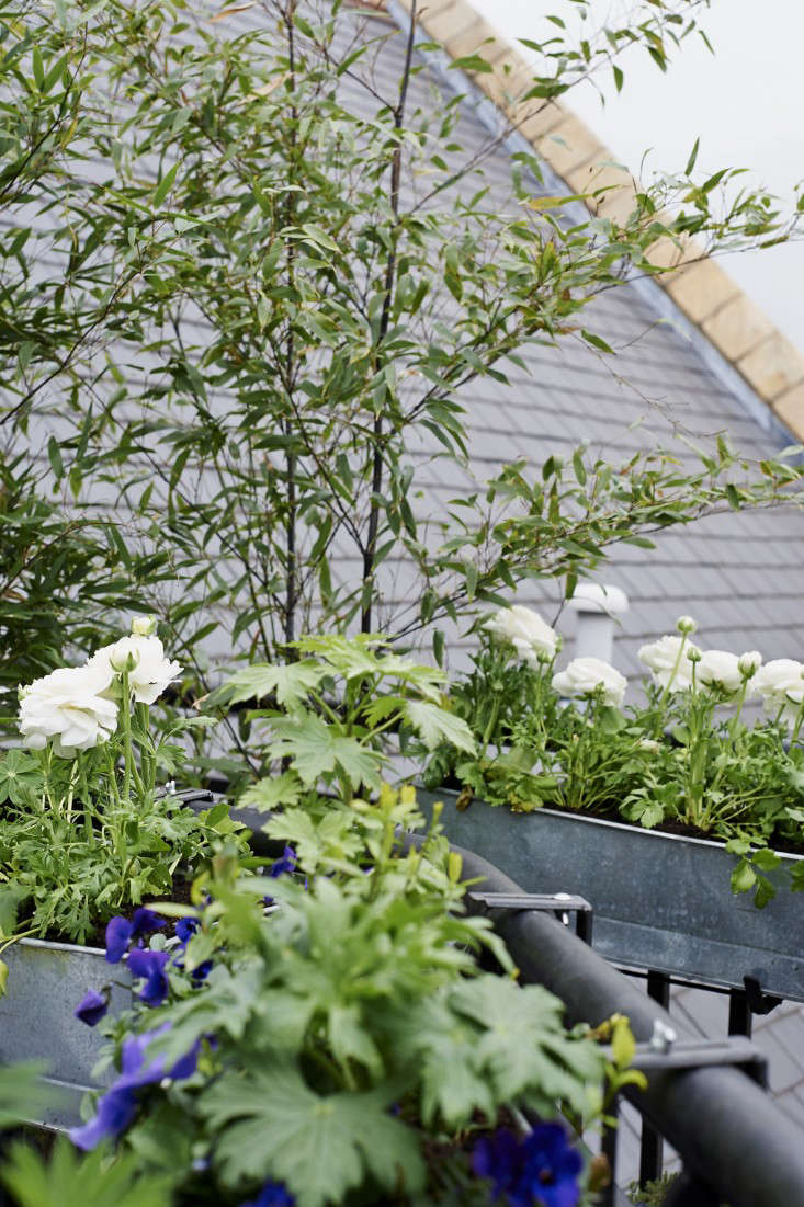 Ask The Expert 10 Tips To Transform A Tiny Balcony Into