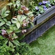 isabelle-palmer-balcony-gardener-jonathan-gooch-9-gardenista
