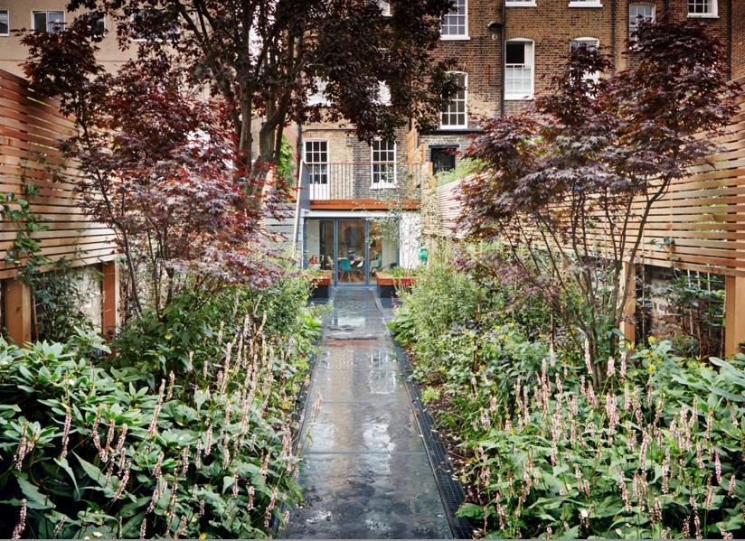 islington-garden-gardenista