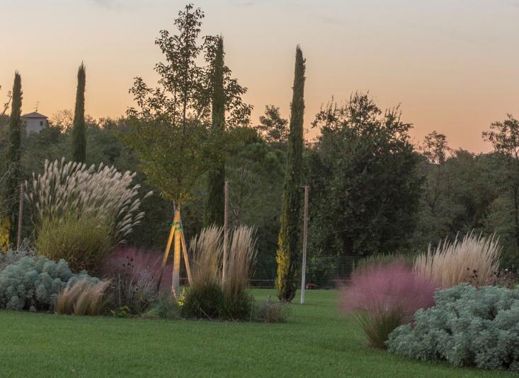 italy cristiana ruspa garden perennials planting scheme lawn