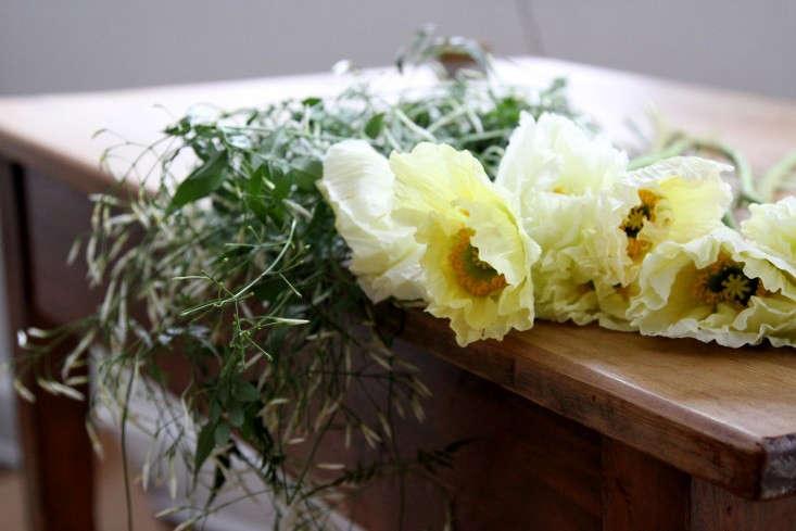 jamess-daughter-flowers-poppies-erin-boyle-gardenista