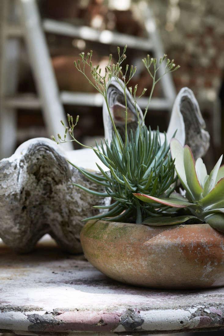jocie-sinauer-red-chair-backyard-gardenista-6
