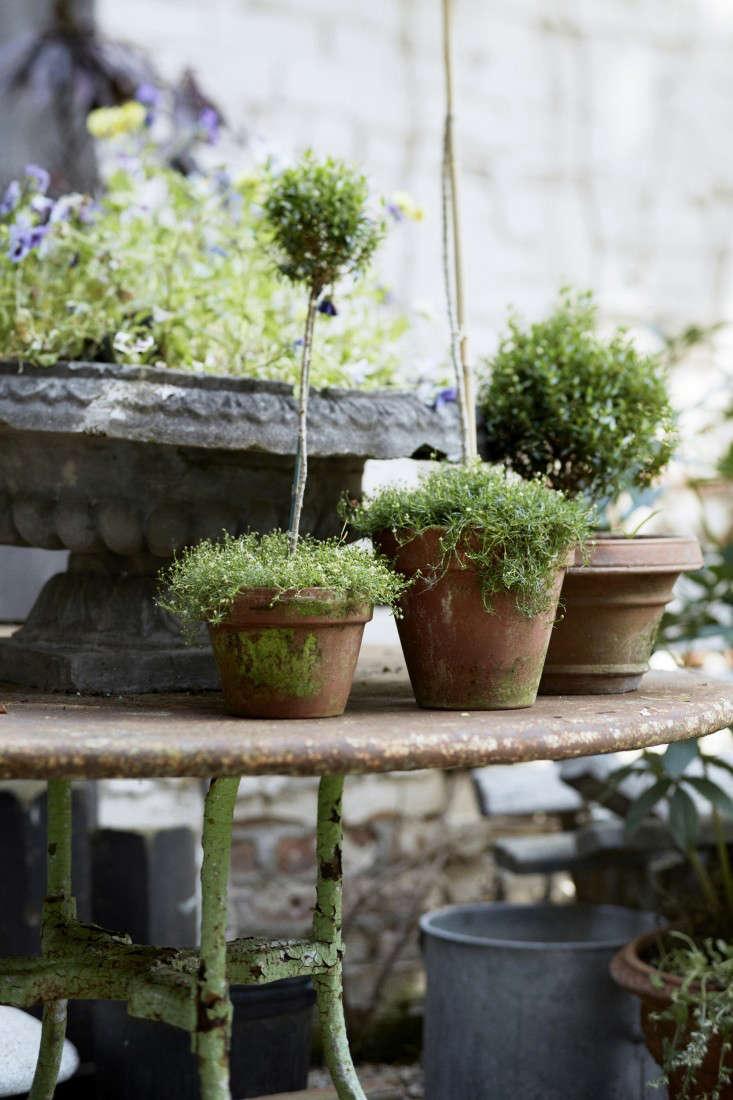jocie-sinauer-red-chair-backyard-gardenista-7