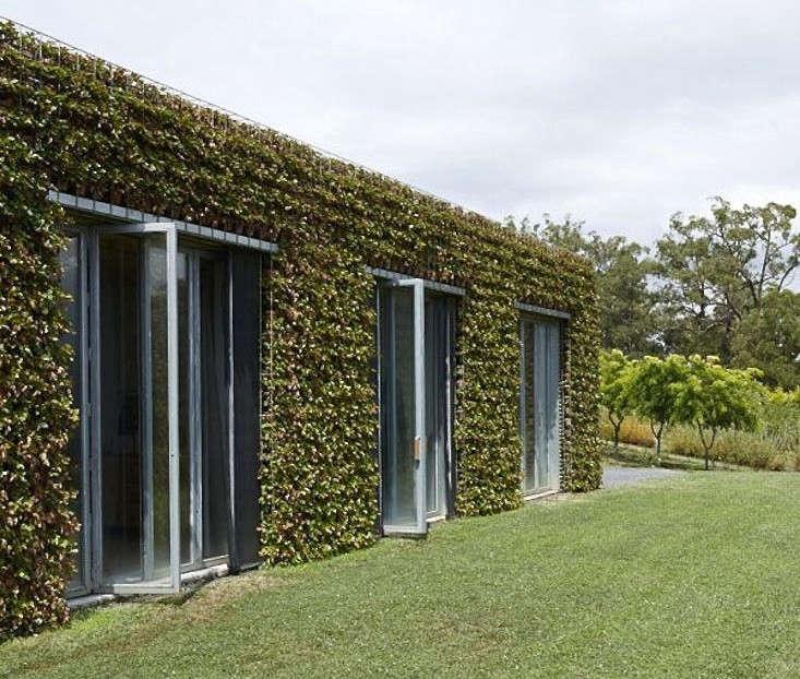 joost-bakker-facade-planted-strawberry-vines-gardenista