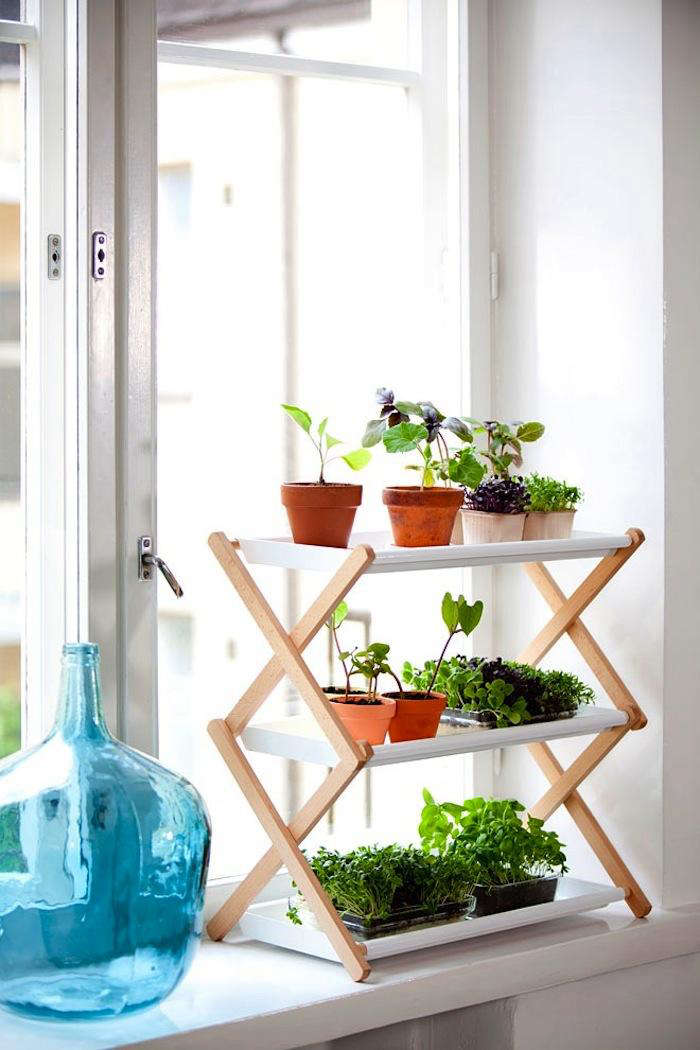Space Saving Stepladder Plant Stands Gardenista