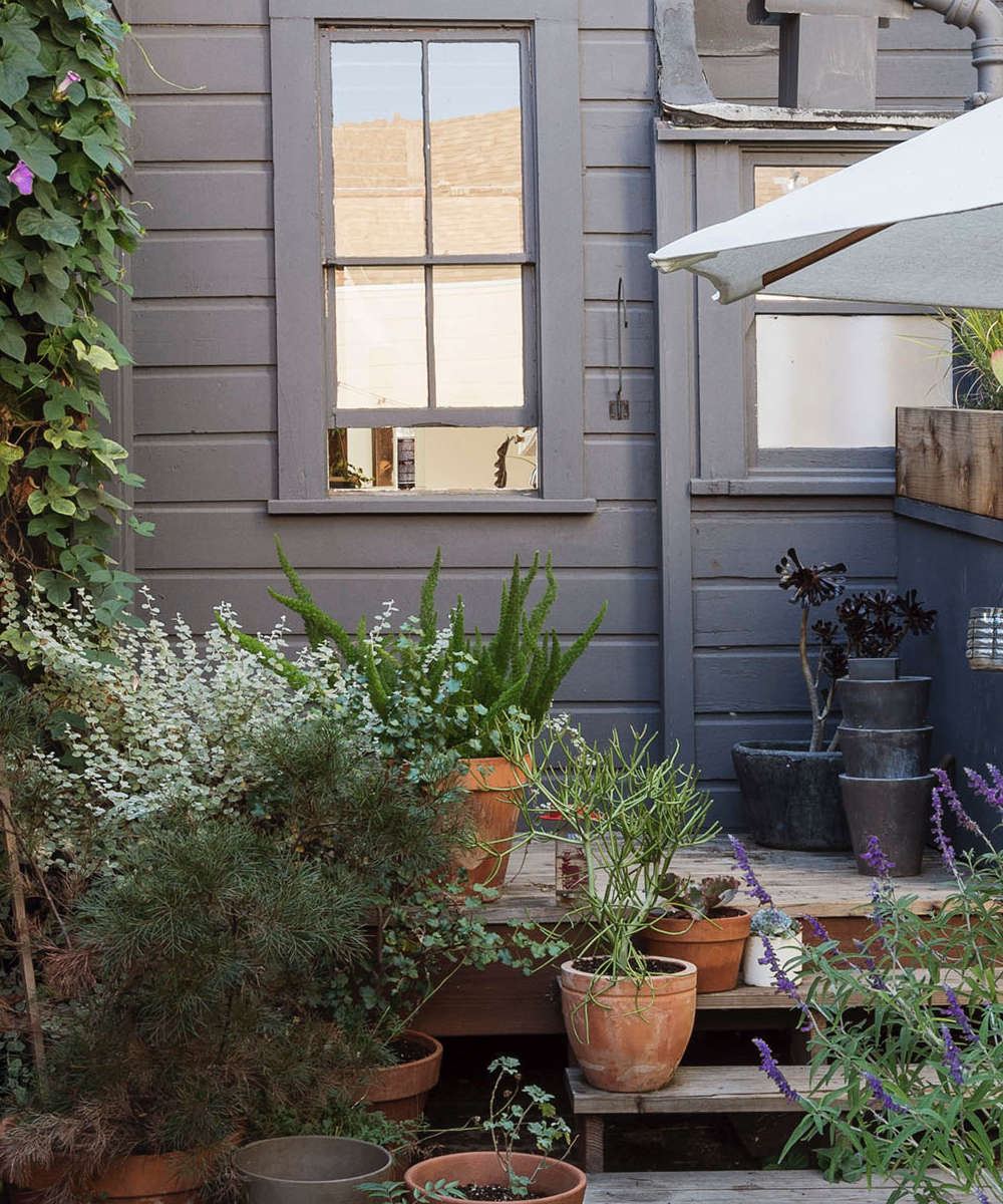 klein-back-stoop-san-francisco-gardenista