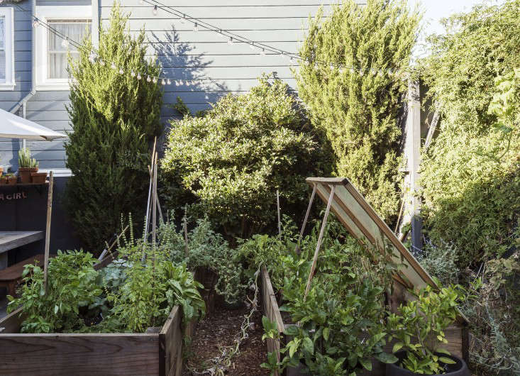 klein-garden-mission-san-francisco-gardenista-raised-beds