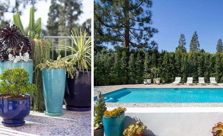 la-hancock-park-kathleen-ferguson-pool-potted-plants-gardenista