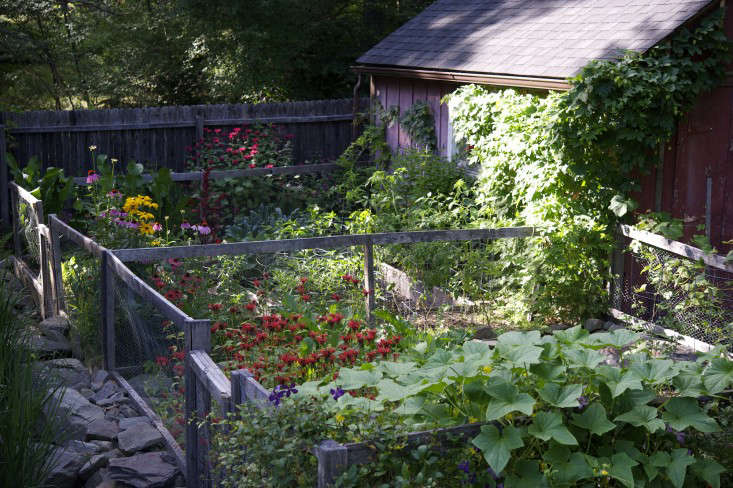 laura-silverman-raised beds_back-gardenista