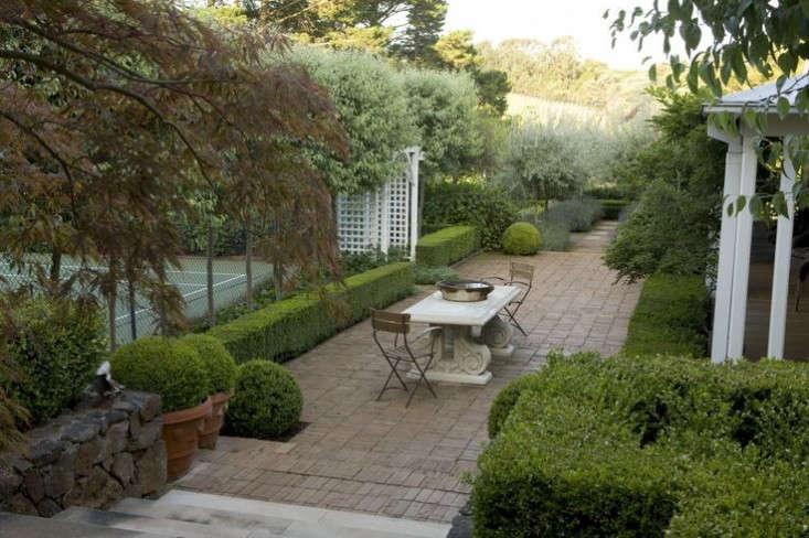 lavender-drought-tolerant-garden-olive-trees-aurstralia-gardenista-6