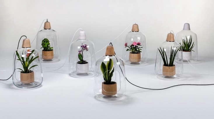 lightovo-pendant-lights-gardenista