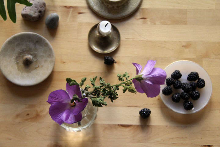 lili-cuzor-gardenista-3