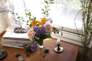 lili cuzor | gardenista